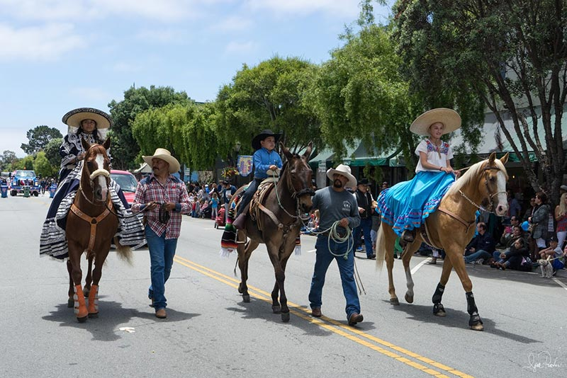 4th of July Parade equestrian entries